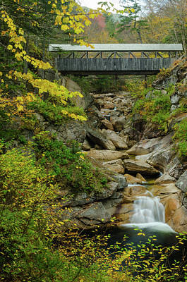 Photograph - Sentinel Pine Bridge by Mike Ste Marie