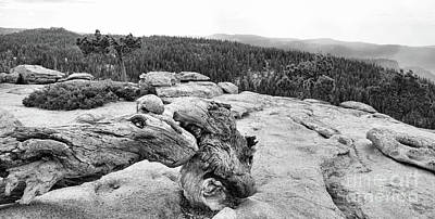 Photograph - Sentinel Yosemite Black White Natures Best Yosemite  by Chuck Kuhn