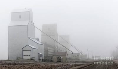 Sentinels In The Fog Art Print