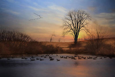 Sentinels Of Spring Art Print by Lori Deiter