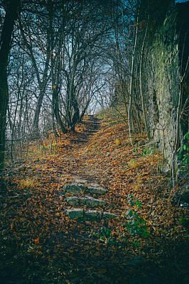 Photograph - Sentry Path Sighisoara by Adam Rainoff