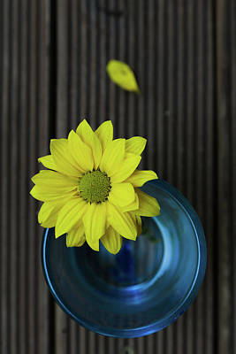 Still Life Royalty-Free and Rights-Managed Images - Separation by Eti Reid