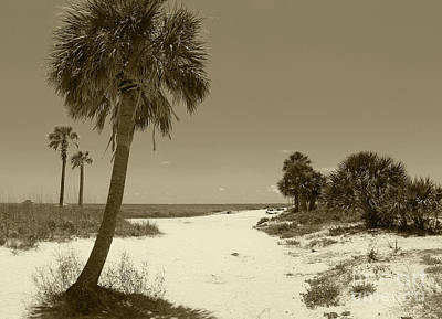 Photograph - Sepia Beach by Jeanne Forsythe