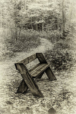 Photograph - Sepia Bench by David Heilman