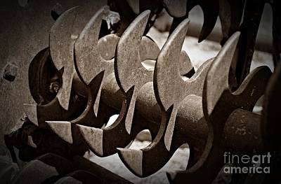 Photograph - Sepia Blades by Chalet Roome-Rigdon