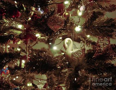 Photograph - Sepia Christmas Tree by Cassandra Buckley