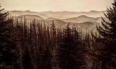 Sepia Morning From Clingmans Dome Art Print