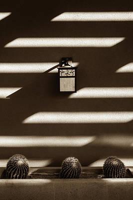 Sepia Stucco Shadows Art Print