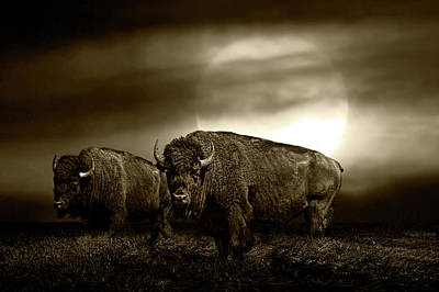 Photograph - Sepia Tone Of An American Bison Under A Super Moon by Randall Nyhof
