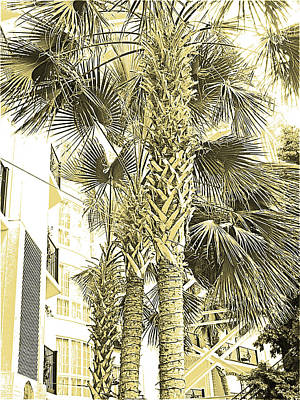 Sepia Ink Digital Art - Sepia Toned Pen And Ink Palm Trees by Marian Bell
