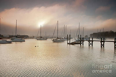 Photograph - September Fog by Butch Lombardi