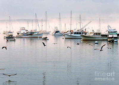 Photograph - September Fog by Janice Drew