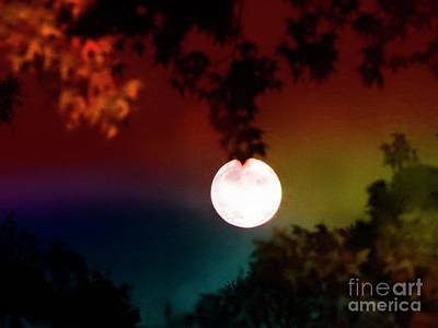 Photograph - September Full Moon by Leslie Hunziker