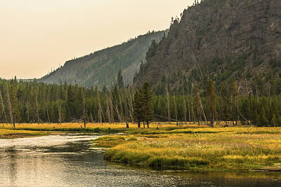 Photograph - September Gold In Yellowstone Park by Yeates Photography