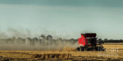 Photograph - September Harvest by Brad Allen Fine Art