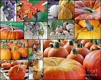 Photograph - September In New England  by Janice Drew