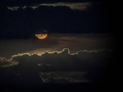 Photograph - September Moon by Brian Shepard