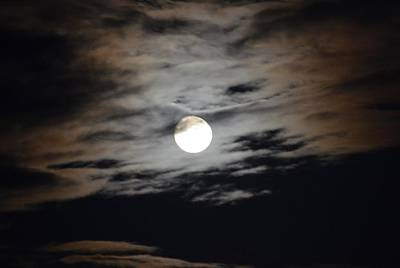 Photograph - September Moon II by Maria Urso