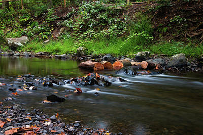 Photograph - September Morning At Black Creek by Jeff Severson
