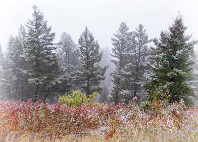 Photograph - September Snow Squall by Carolyn Derstine