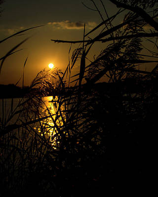 Photograph - September Sunset by Miguel Winterpacht