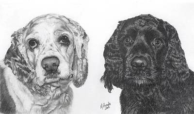 Cocker Spaniel Drawing - Sere And Cole by Marlene Piccolin