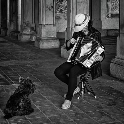 Photograph - Serenade For A Dog by Cornelis Verwaal