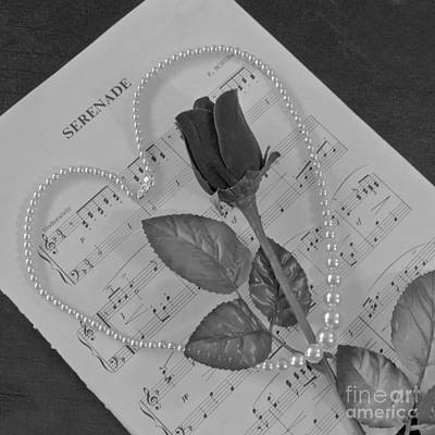Photograph - Serenade In Monochrome by Terri Waters