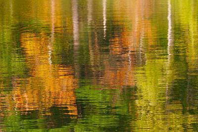 Photograph - Serene Autumn Reflection by Polly Castor