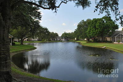 Photograph - Serene Florida Lake by Gary Wonning