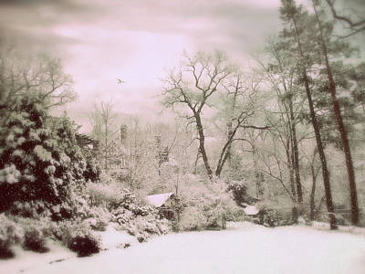 Photograph - Serene In Snow by Jessica Jenney