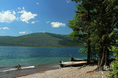 Photograph - Serene Mcdonald Lake by Christiane Schulze Art And Photography