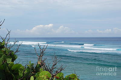 Photograph - Serene Ocean View by Gary Wonning