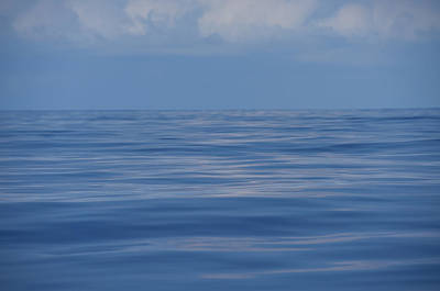 Photograph - Serene Pacific by Jennifer Ancker