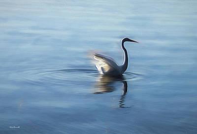 Photograph - Peace by Phil Mancuso