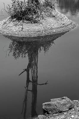 Photograph - Serene Reflection, Nagzira, 2011 by Hitendra SINKAR