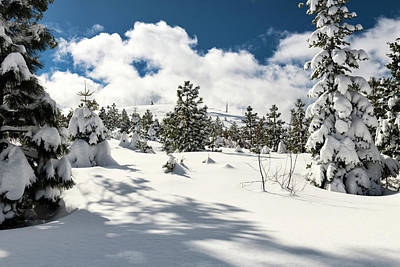 Photograph - Serene Sierra Snow by Jim Thompson