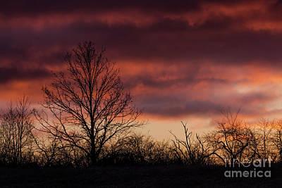 Photograph - Serene Sunrise Sky by Cheryl Baxter