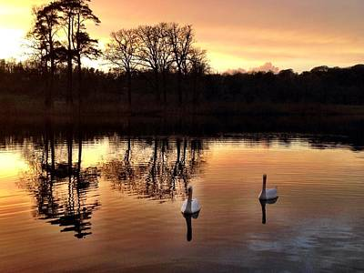 Dromoland Photograph - Serene Twilight by Elizabeth Wuebker