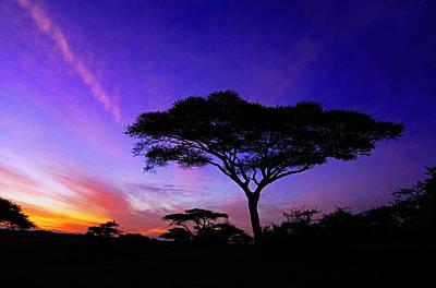 Photograph - Serengeti Dawn by Dennis Cox WorldViews