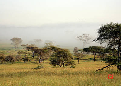 Digital Art - Serengeti Mist by David Jenkins