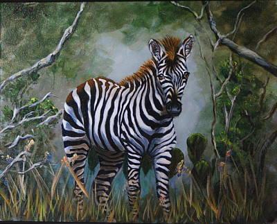 Serengeti Zebra Art Print