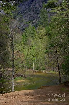 Photograph - Serenity By The Merced River by Debby Pueschel