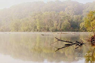 Photograph - Serenity And Bliss by Viviana  Nadowski