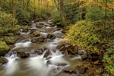 Photograph - Serenity At Jones Gap Creek by Willie Harper