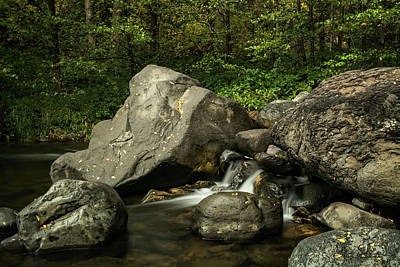 Photograph - Serenity Creekside  by Saija Lehtonen