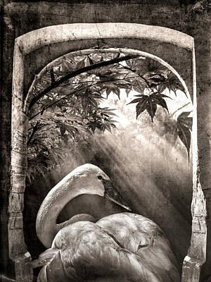 Photograph - Serenity In Sepia by Debra and Dave Vanderlaan