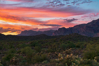 Photograph - Serenity In The Superstitions  by Saija Lehtonen