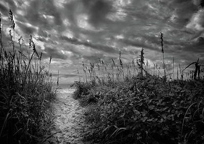 Photograph - Serenity Path by Denis Lemay