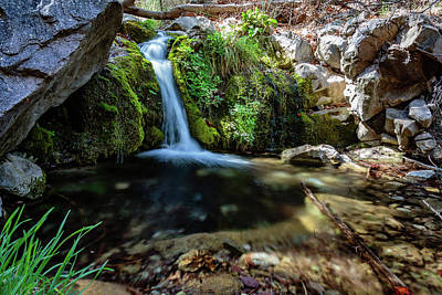 Ramsey Canyon Photograph - Serenity Personified by Dennis Swena